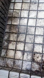 玄関アプローチタイル洗浄